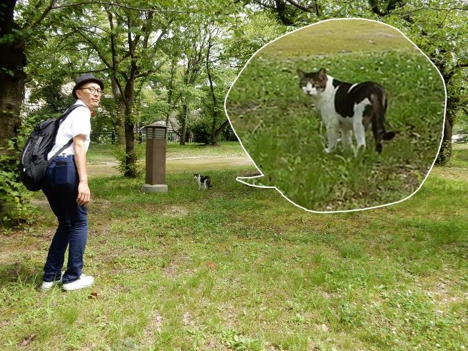 大阪城西の丸庭園 (24)