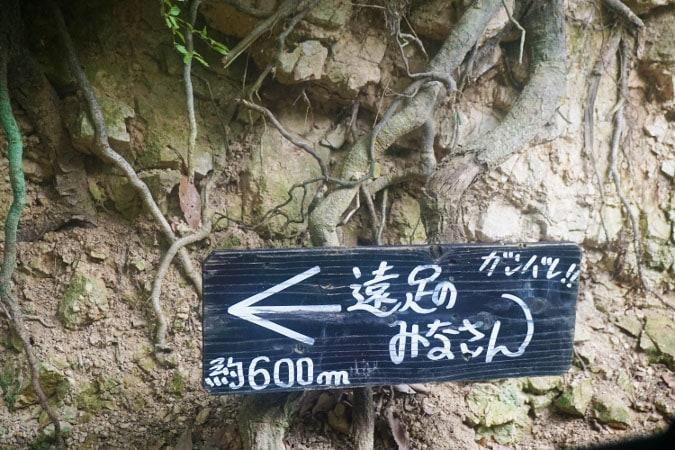 城山オレンヂ園 (5)