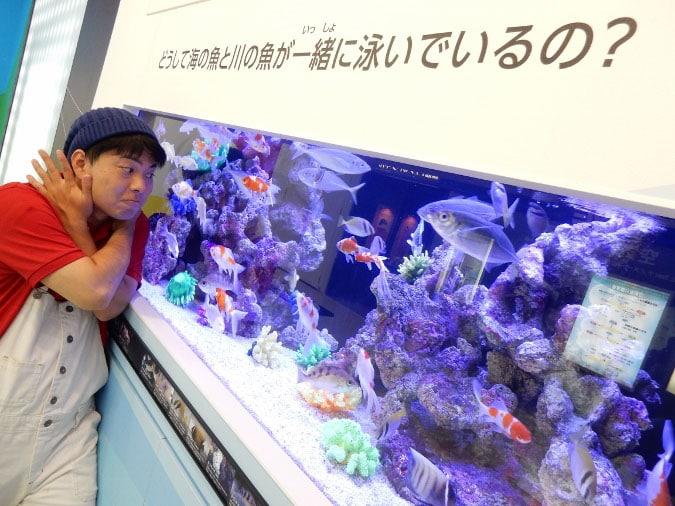 大阪科学技術館 (29)
