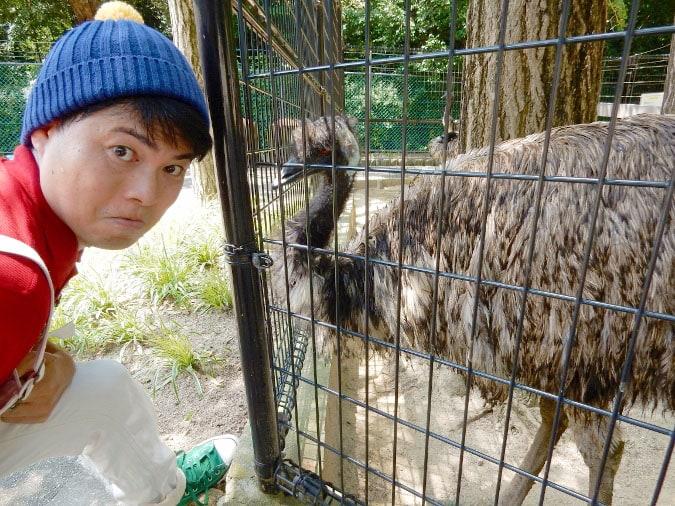 五月山動物園 (11)