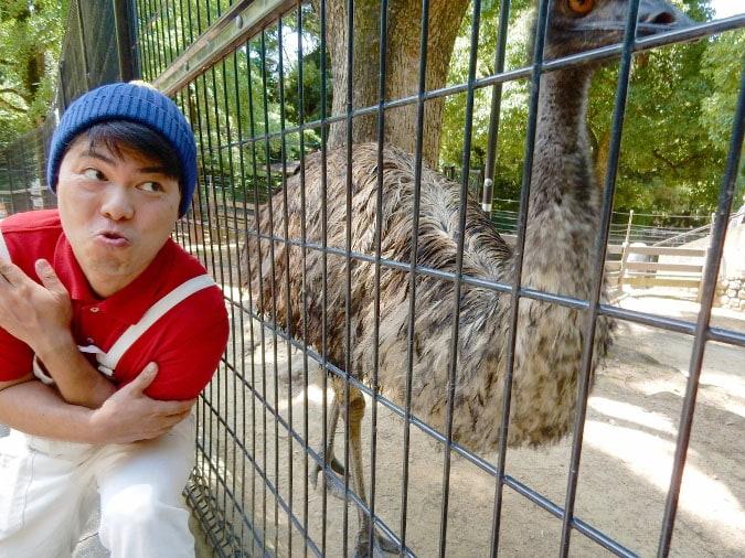 五月山動物園 (12)