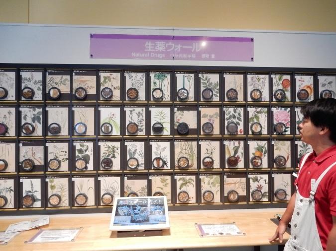 大阪市立科学館 (56)