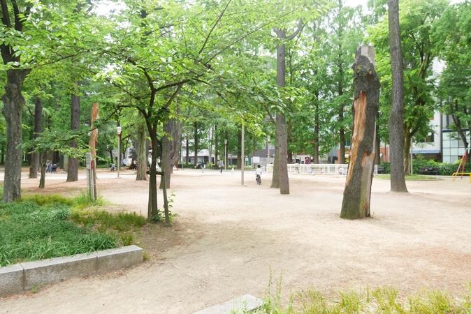 靭公園-(52)