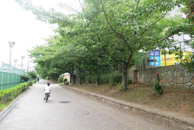 靭公園-(8)