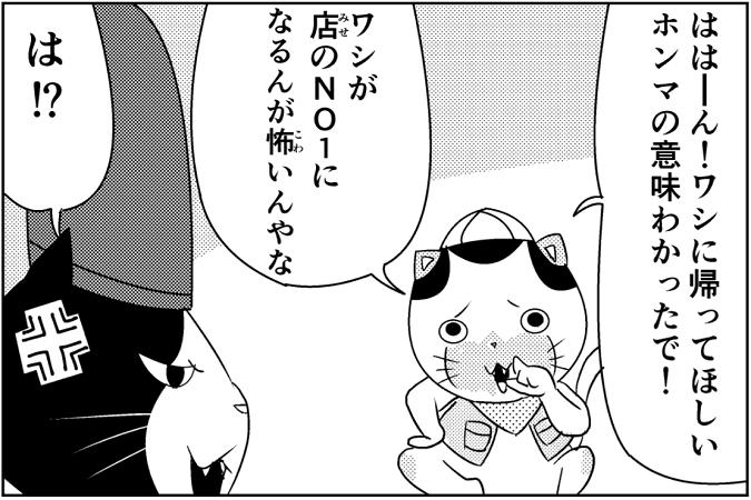 にゃっさん43-13
