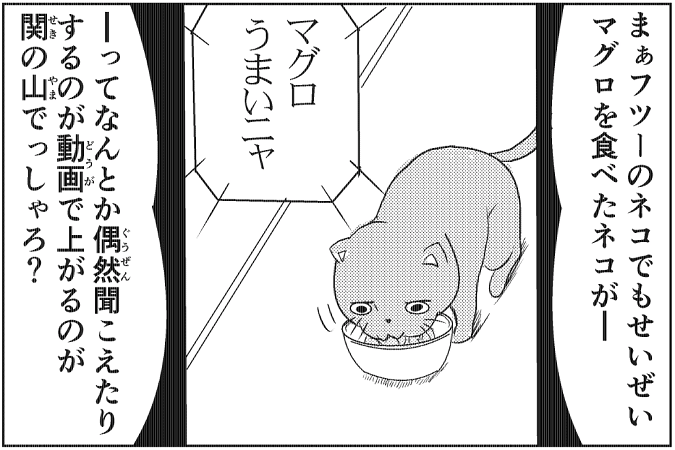 にゃっさん42-13